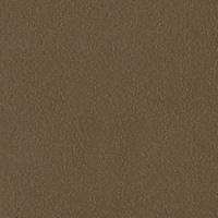 Anodized Lt. Bronze LR 100110-0199
